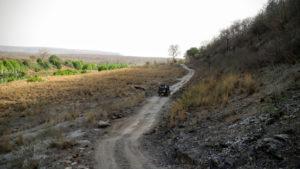 panna-tiger-reserve
